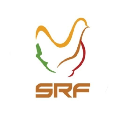 Jual Ayam Joper | SRF